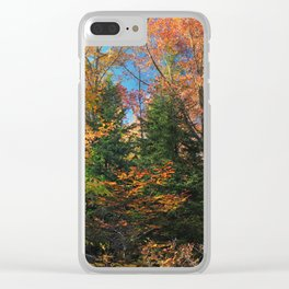 Autumn Forest Photograph Clear iPhone Case