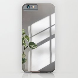 Plant in a vase on the table iPhone Case