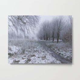 Walk in the Frost Metal Print