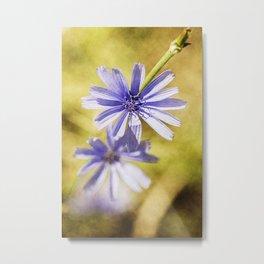 wild flowers #123 Metal Print