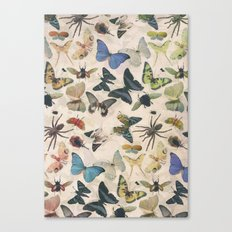 Insect Jungle Canvas Print