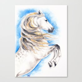 White Andalusian Canvas Print