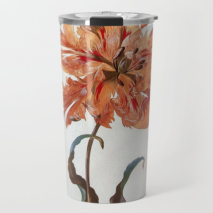 A Parrot Tulip Auriculas & Red Currants with a Magpie Moth Caterpillar Pupa by Maria Sibylla Merian Travel Mug
