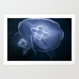 Moon Jellyfish 1 Color Art Print