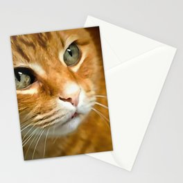 Adorable Ginger Tabby Cat Posing Stationery Cards