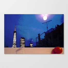 Transamerica Pyramid from a Telegraph Hill Windowsill Canvas Print