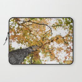 Fall Colors  //  Look Up Laptop Sleeve