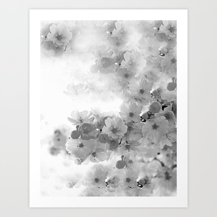 CHERRY BLOSSOMS GRAY AND WHITE Art Print