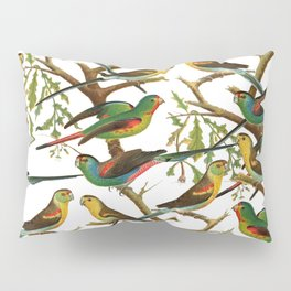 Colorful red green tropical birds parakeets pattern Pillow Sham