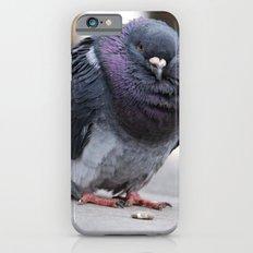 Mr Pigeon iPhone 6s Slim Case