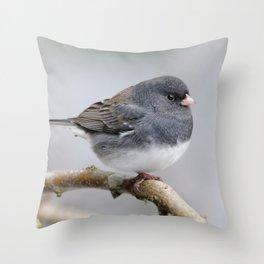Fluffy Cassiar Dark-Eyed Junco on the Pear Tree Throw Pillow
