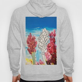 Alpinia purpurata – Red Ginger Flower Hoody