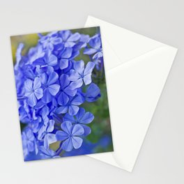 Summer garden blues - macro floral phtography Stationery Cards