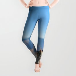 Adorable squirrel at the edge of the world Leggings