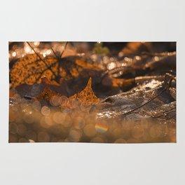 Autumn Bokeh Rug