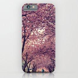 sakura four iPhone Case
