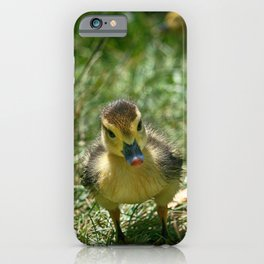Duckie Portrait - Colorful iPhone Case