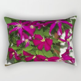 Clematis viticella Mme Julia Correvon Rectangular Pillow