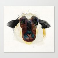 sheep Canvas Prints featuring sheep by Alvaro Tapia Hidalgo