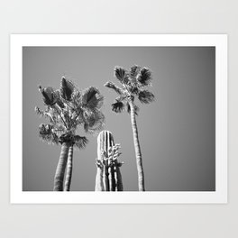Arizona Black and White Art Print