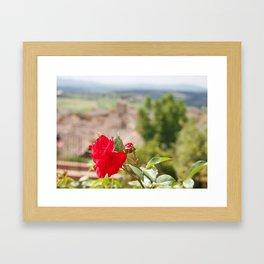 Il Fiore Framed Art Print