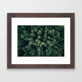 Forest from above - Landscape Photography Framed Art Print