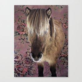 Icelandic pony with rosy posies Canvas Print