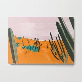 Desert Botanical Garden View 2 Metal Print
