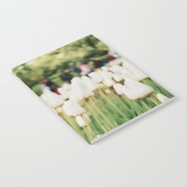 White tulips Notebook