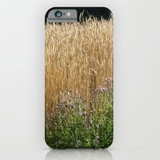 Field of summer iPhone 6s Slim Case