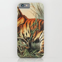 Royal bengal tiger from Johnson's household book of nature (1880) by John Karst (1836-1922) iPhone Case