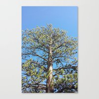 giants Canvas Prints featuring Giants by Nicole Roberts