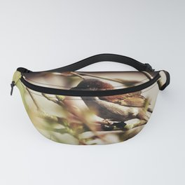 759 Fanny Pack