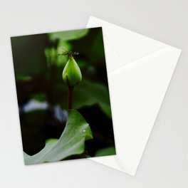 Resting Dragonfly on a Lotus Bud Stationery Cards