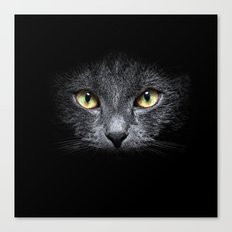 Black Cat 03 Canvas Print