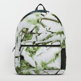 Steller's Jay in the Snow Backpack