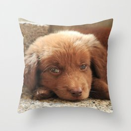 Potter's Cute Beginning: Sleepy Head Throw Pillow