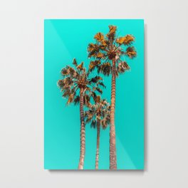 Palm Spring Trees, Breezy Palm, California Laguna Beach, Sunny California Palm Tree Leaves Metal Print