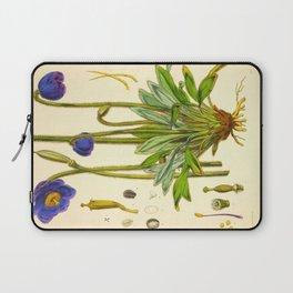 Purple Flowers Vintage Botanical Illustration Scientific Species Drawing Laptop Sleeve