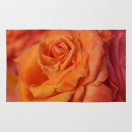 Tangerine Rose Rug