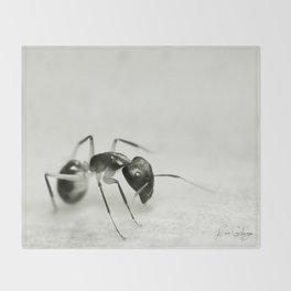 Drunken Ant Throw Blanket