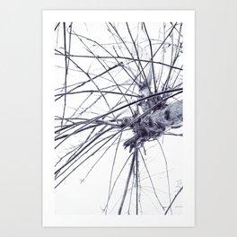 Léxico / Lexicon Art Print