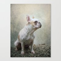 french bulldog Canvas Prints featuring French bulldog  by Pauline Fowler ( Polly470 )