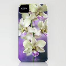 orchids Slim Case iPhone (4, 4s)