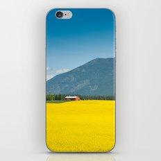 Canola farm iPhone & iPod Skin