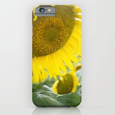 here comes the sun. iPhone 6s Slim Case