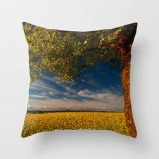 Wonderful springfields with beautiful sky - Rape Throw Pillow