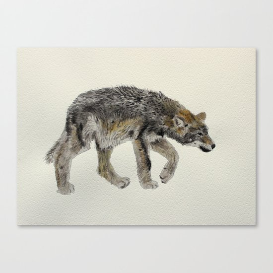 Wolf cub - Louveteau - Lobezno - Lobacho Canvas Print