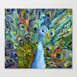 All About The Peacock Canvas Print