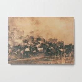 Wild Life in a Hurry Metal Print